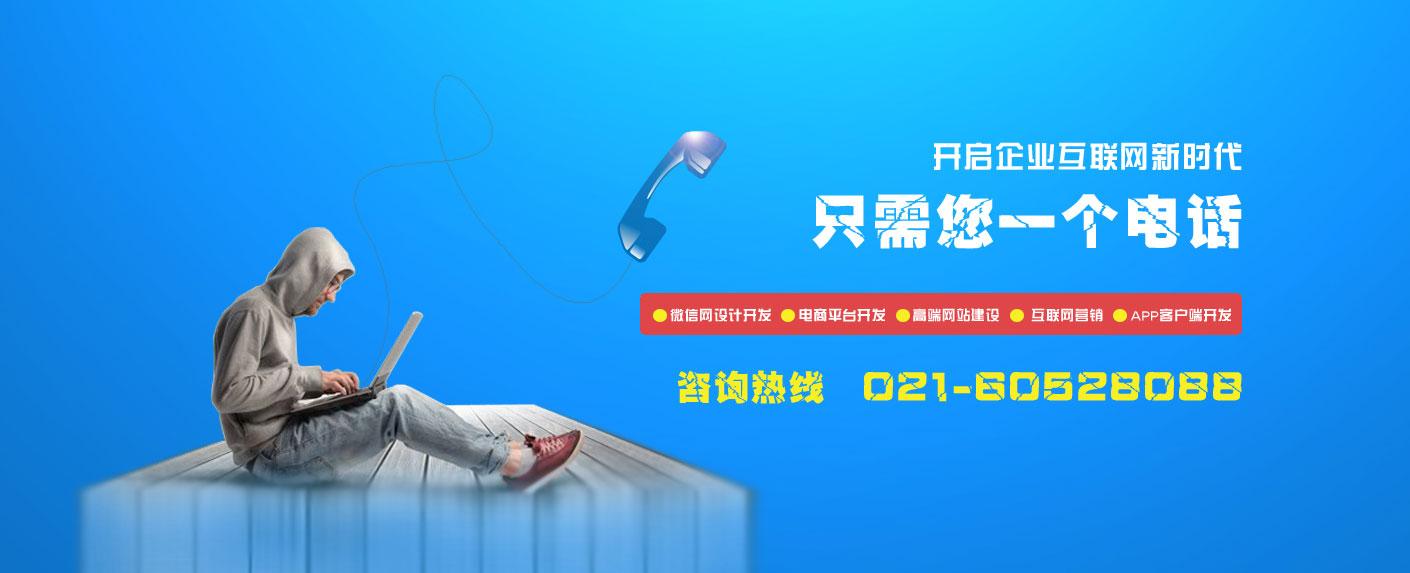 上海畔游网站建设